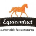 Equicontact